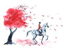 De boom van de waterverfherfst met rode bladeren en ruiter en op vlek grijs paard op wit Stock Afbeelding