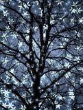 De boom van de winter royalty-vrije illustratie