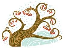 De boom van de winter met rode bessen Stock Foto's
