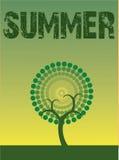 De boom van de zomer Royalty-vrije Stock Afbeelding