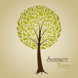 De boom van de zomer Stock Afbeeldingen