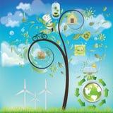 De boom van Eco Stock Afbeeldingen