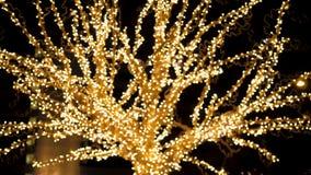 De Boom van Garland Glows And Flickers With de Lichten van Gouden Kleur bij Nacht stock footage