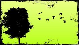 De boom van Grunge met achtergrond Royalty-vrije Stock Fotografie