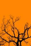 De Boom van Halloween op Sinaasappel Royalty-vrije Stock Afbeeldingen