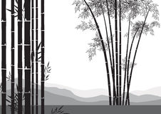De boom van het bamboe Royalty-vrije Stock Fotografie