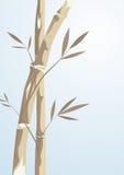 De boom van het bamboe Royalty-vrije Stock Foto