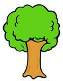 De boom van het beeldverhaal Royalty-vrije Stock Afbeeldingen