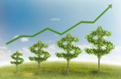 De boom van het geld Stock Afbeelding