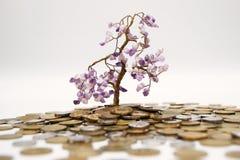 De boom van het geld Royalty-vrije Stock Foto