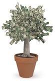 De Boom van het geld in bloempot Stock Afbeeldingen