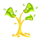 De boom van het geld met muntstukken Stock Afbeelding