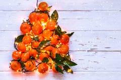 De boom van het Kerstmisnieuwjaar van mandarijnen en brandende slingers Royalty-vrije Stock Foto's