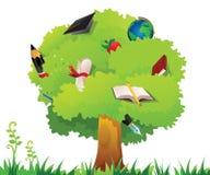De boom van het onderwijs Stock Afbeeldingen
