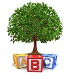 De boom van het onderwijs Stock Afbeelding