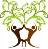 De boom van het paar Royalty-vrije Stock Foto's