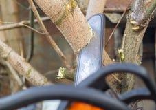 De boom van houthakkerzagen met kettingzaag op zaagmolen stock fotografie