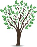 De boom van Nice Royalty-vrije Stock Fotografie