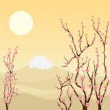 De boom van Sakura. Stock Foto's