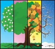De boom van seizoenen vector illustratie
