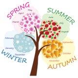 De boom van seizoenen Stock Fotografie