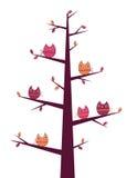De boom van uilen Stock Fotografie