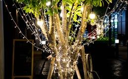 De boom werd verfraaid met Kerstmislichten Royalty-vrije Stock Afbeeldingen