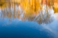 De boombezinning van het fotografieonduidelijke beeld over water Stock Foto's