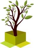 De boomembleem van de doos royalty-vrije illustratie
