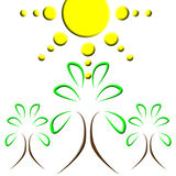 De boomembleem van de zon Stock Fotografie
