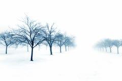 De boomgaard van de winter royalty-vrije stock afbeelding