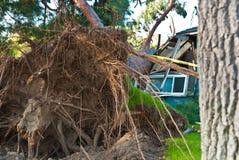De boommoordenaar vernietigt huis Royalty-vrije Stock Afbeelding