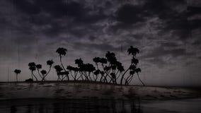 De boomoceaan van onweerspalmen stock video
