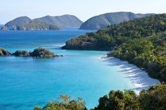 De boomstam blaft ons maagdelijke eilanden Stock Foto's