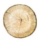 De boomstam van de boombesnoeiing met houten ringen stock afbeeldingen