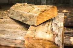 De boomstam van de besnoeiingsboom Royalty-vrije Stock Foto