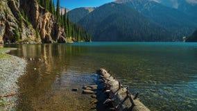 De boomstam van een gevallen pijnboomboom ligt in het meer Kolsay 4K TimeLapse - September 2016, Alma Ata en Astana, Kazachstan stock video