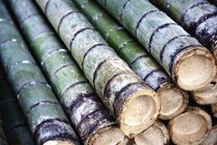 De boomstammenachtergrond van het bamboe stock afbeelding