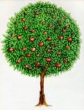 De boomtekening van de appel Stock Foto