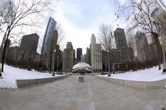 De boon van Chicago in het Park van het Millennium Stock Fotografie