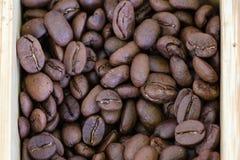 De boon van de koffie Royalty-vrije Stock Afbeeldingen