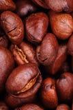 De boon van de koffie in macro Stock Afbeelding