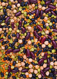 De boon van de nier, linze, erwten en keker Royalty-vrije Stock Afbeeldingen