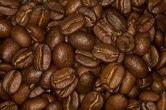 De boonachtergrond van de koffie Stock Foto