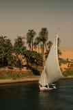 Egypte. De Nijl in Aswan Royalty-vrije Stock Fotografie