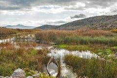 De boot in het meer Stock Foto