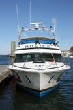 De Boot van de politie Royalty-vrije Stock Fotografie