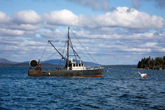 De Boot van de zeekreeft, Maine stock fotografie