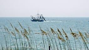 De boot van garnalen Stock Foto