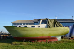De boot van garnalen met verse groene verf Royalty-vrije Stock Fotografie